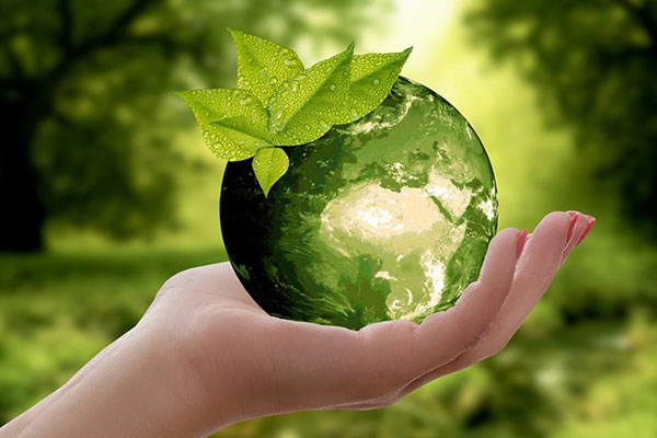 ISO 14001 «Environmental Management System»