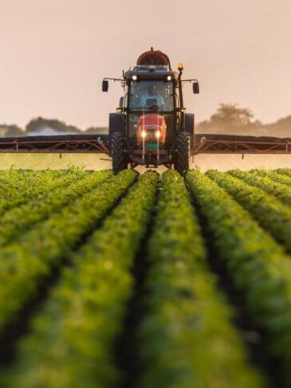 GLOBALG.A.P. - Надлежащая Сельскохозяйственная Практика.